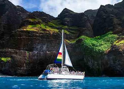 Blue Dolphin Kauai